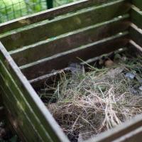 The Edible Garden Project 2015 – part 2