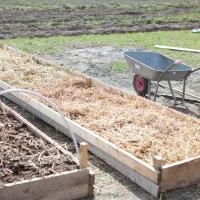 Set up your own garden - Garden beds
